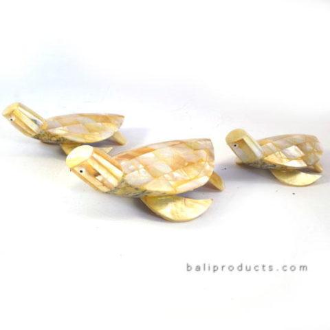 3 Shell Turtles