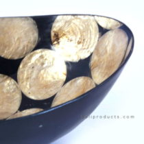 Oval Capize Shell Bowl