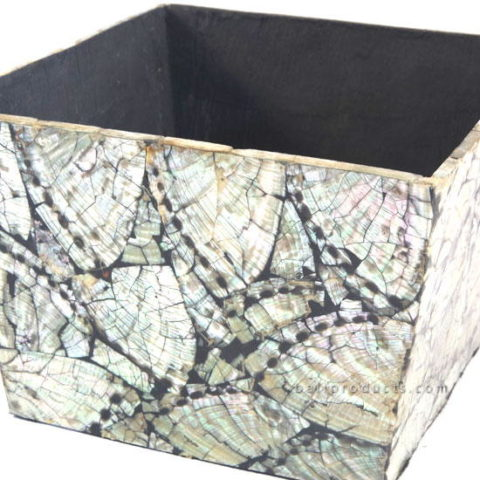 Crushed Shell Box