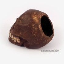 Skull Ashtray Brown